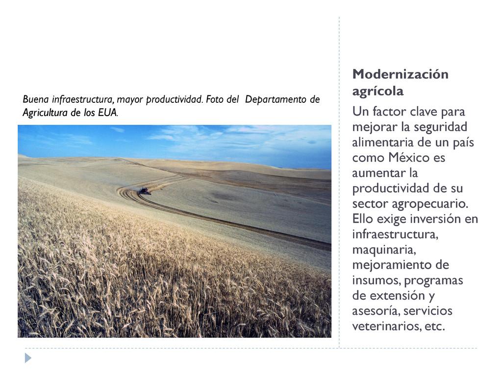 Modernización agrícola Un factor clave para mej...