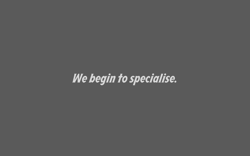 We begin to specialise.