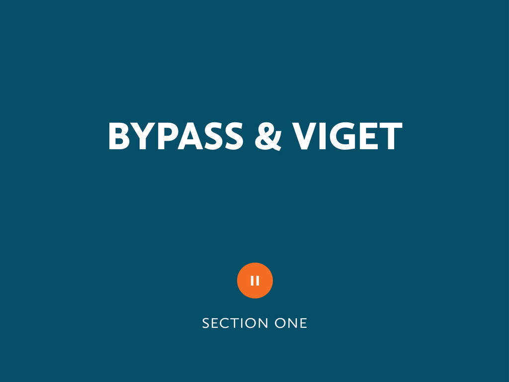   BYPASS & VIGET 