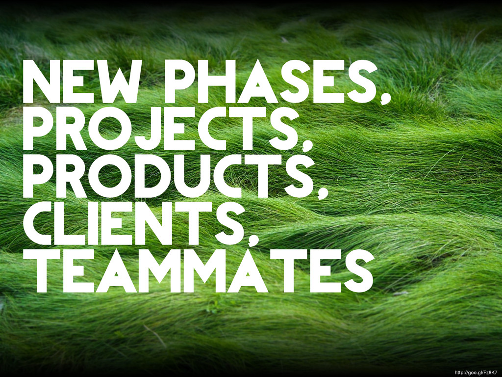 new phases, projects, products, clients, teamma...