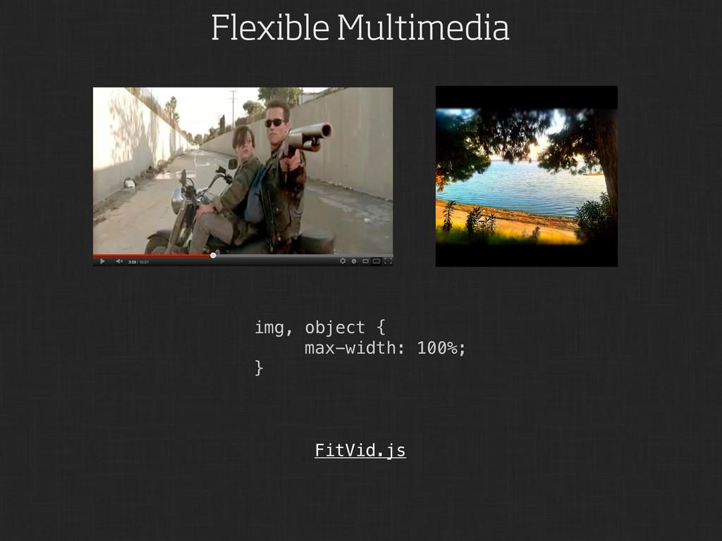 Flexible Multimedia img, object { max-width: 10...