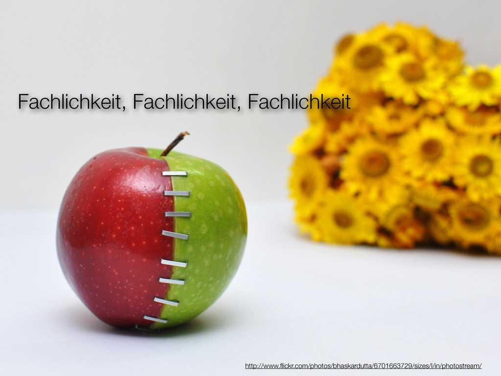 Fachlichkeit, Fachlichkeit, Fachlichkeit http:/...