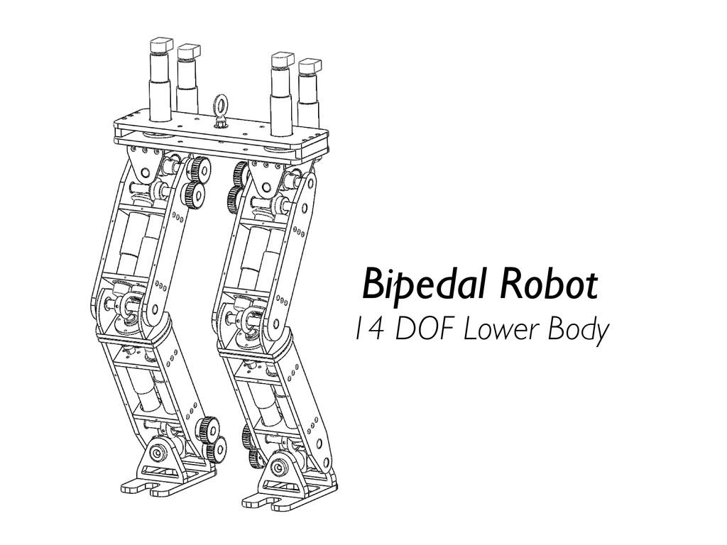 Bipedal Robot 14 DOF Lower Body