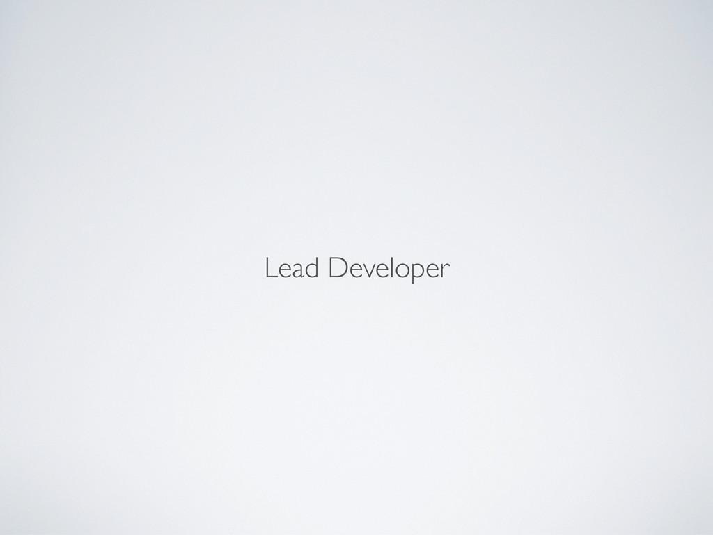 Lead Developer