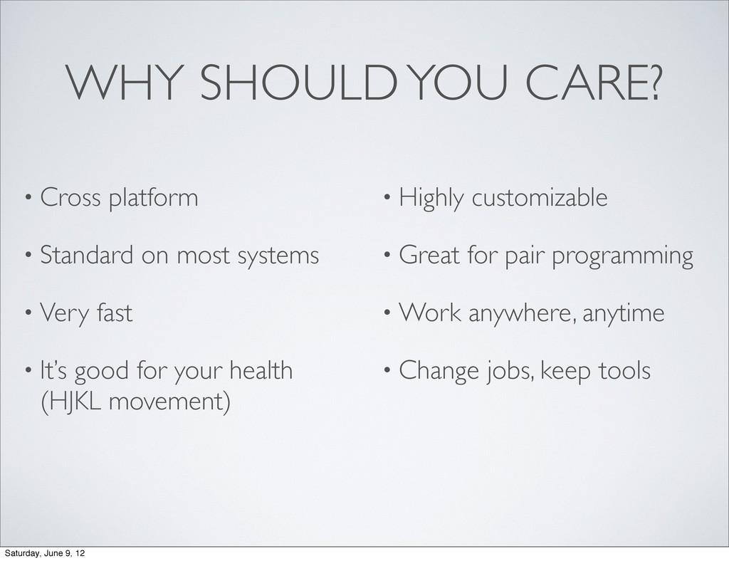• Cross platform • Standard on most systems • V...