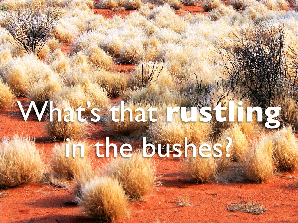 What's that rustling   in the bushes?
