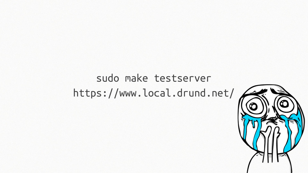 sudo make testserver https://www.local.drund.ne...