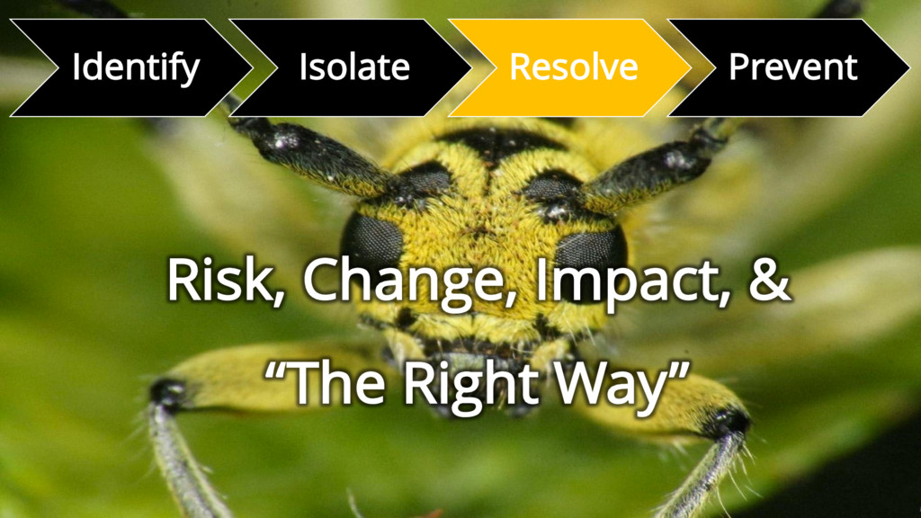 Identify Isolate Resolve Prevent Risk, Change, ...