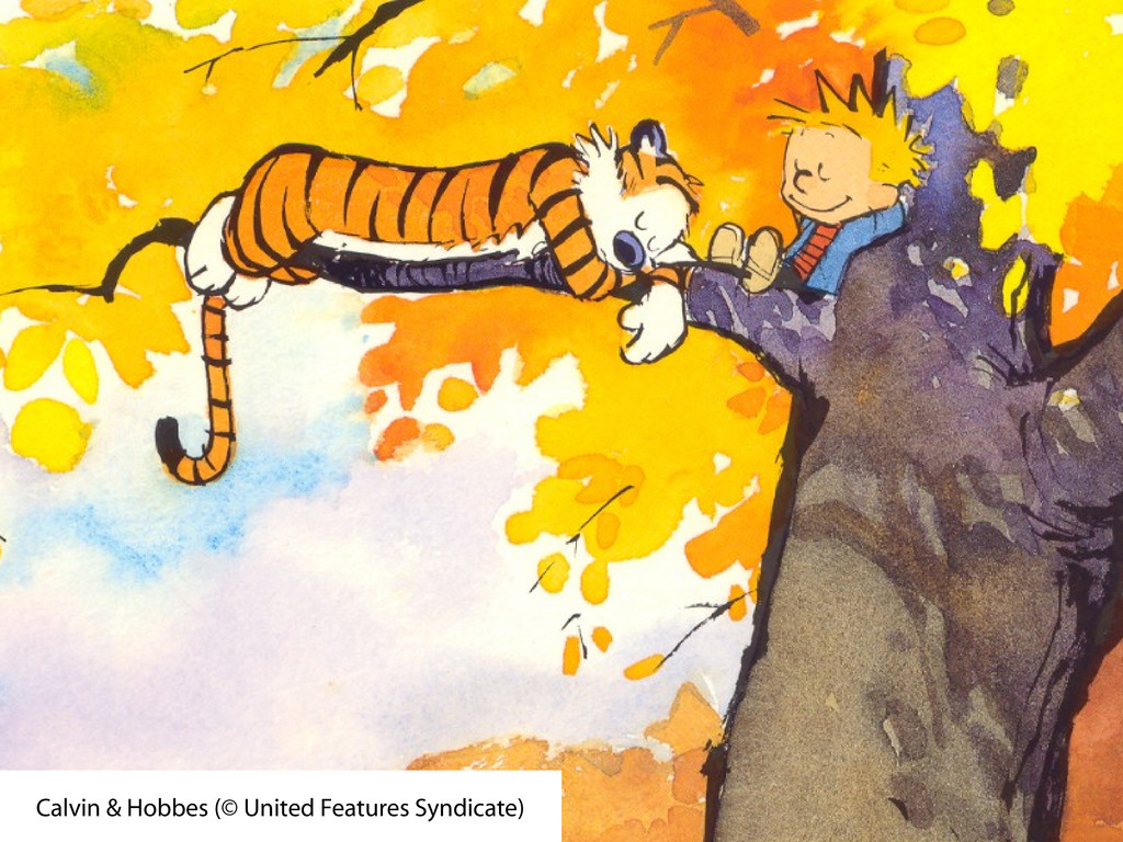 Calvin & Hobbes (© United Features Syndicate)