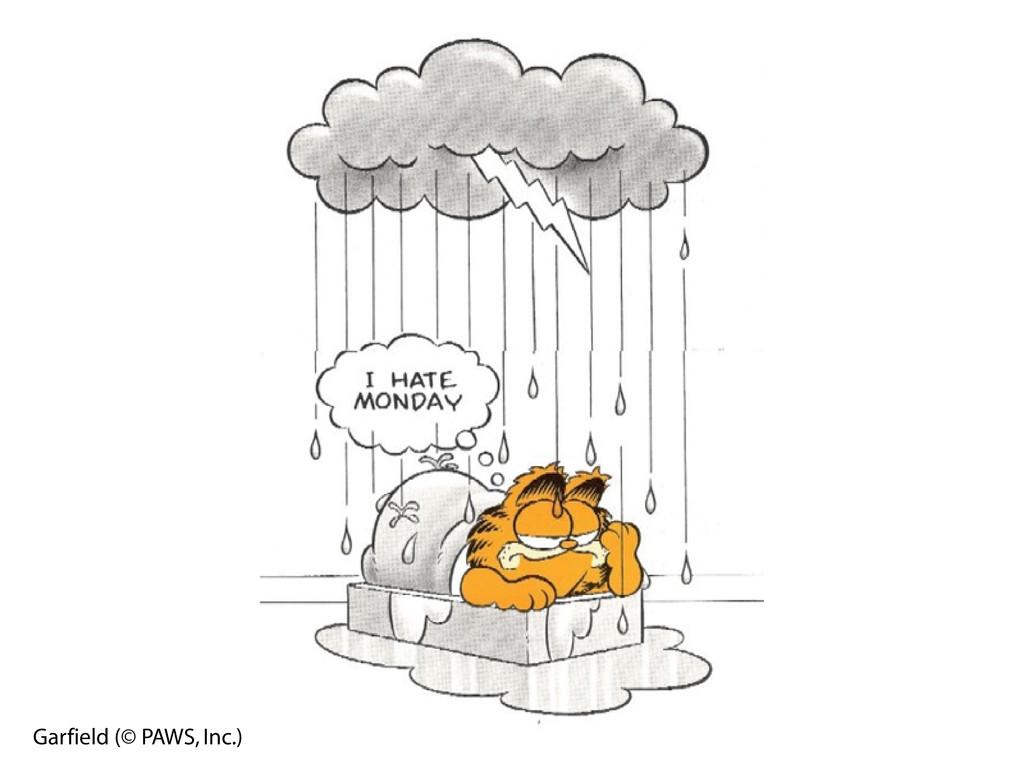 Garfield (© PAWS, Inc.)