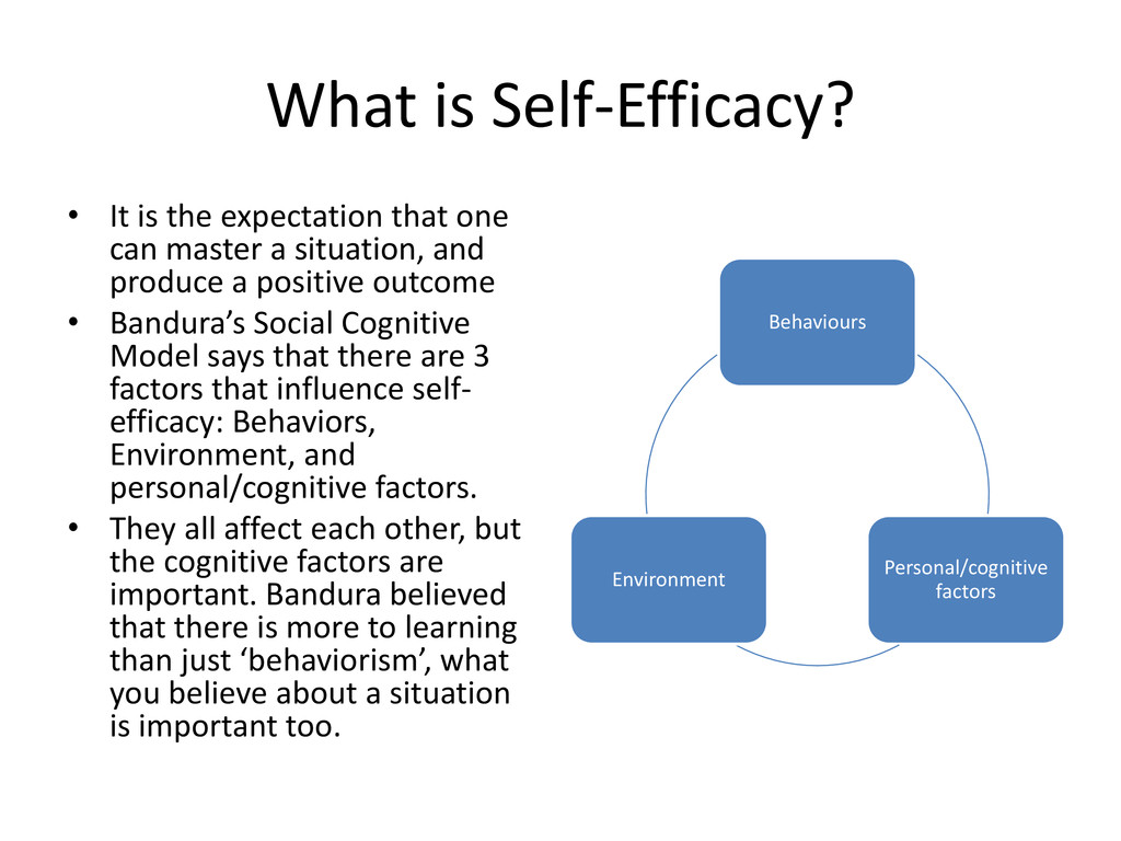 What is Self-Efficacy? • It is the expectation ...