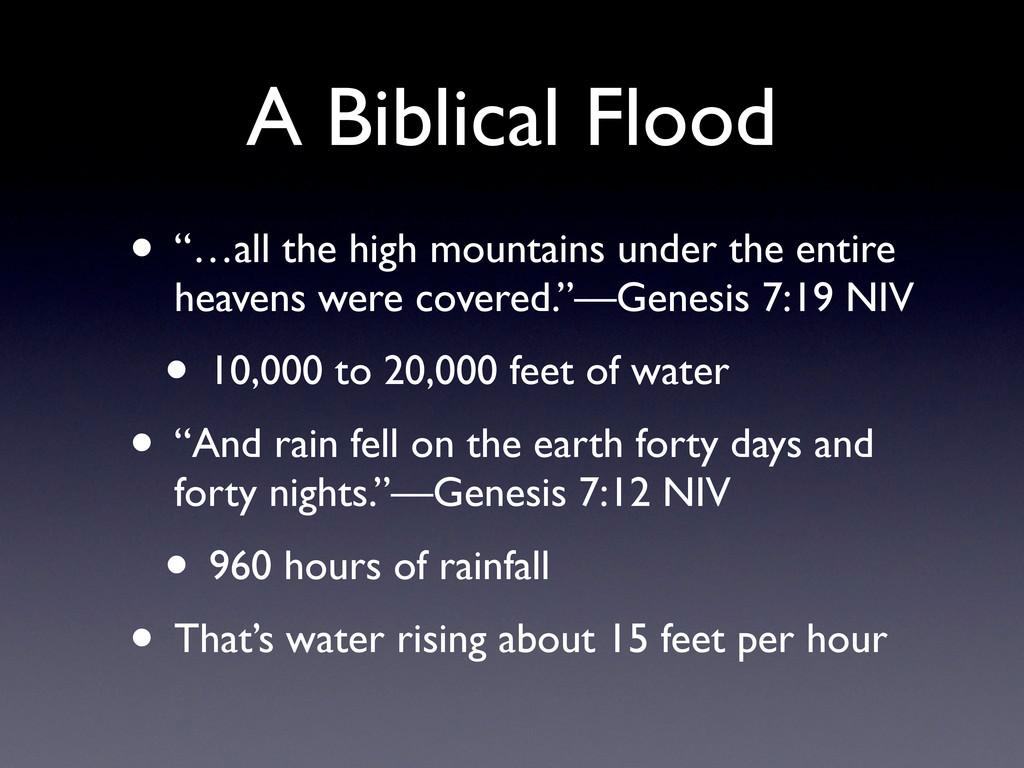 "A Biblical Flood • ""…all the high mountains und..."