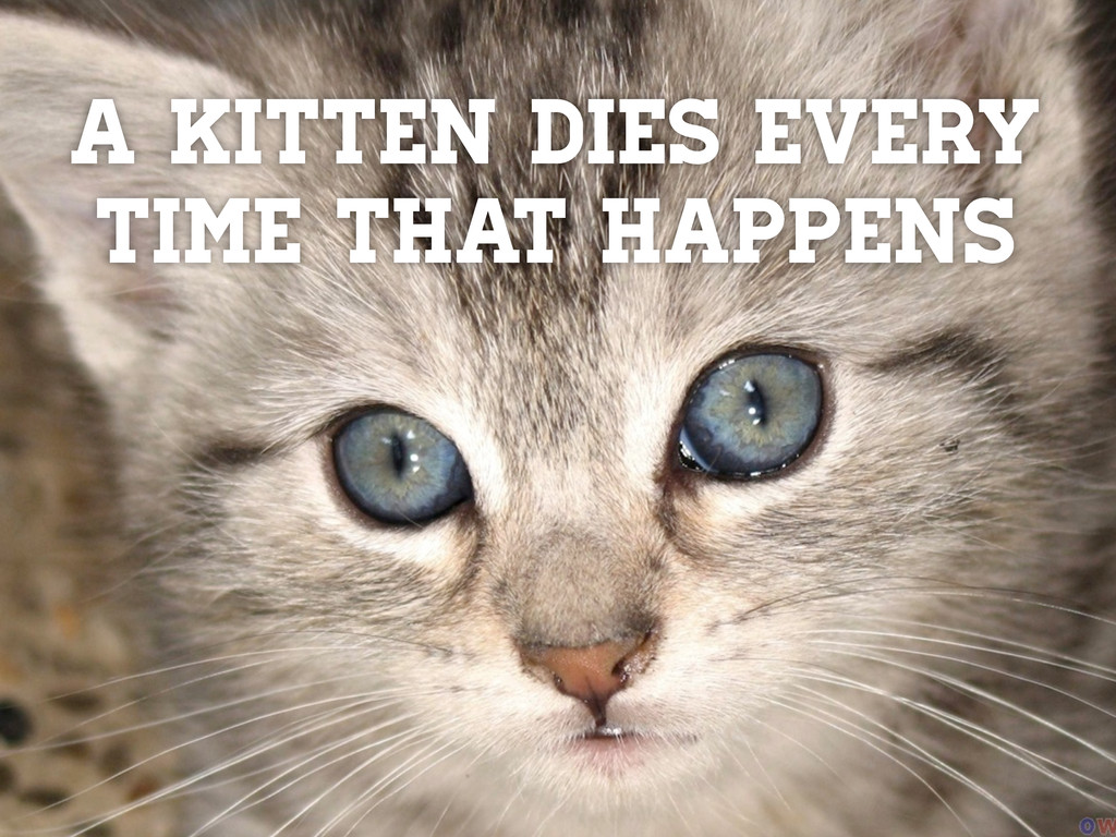A kitten dies every time that happens