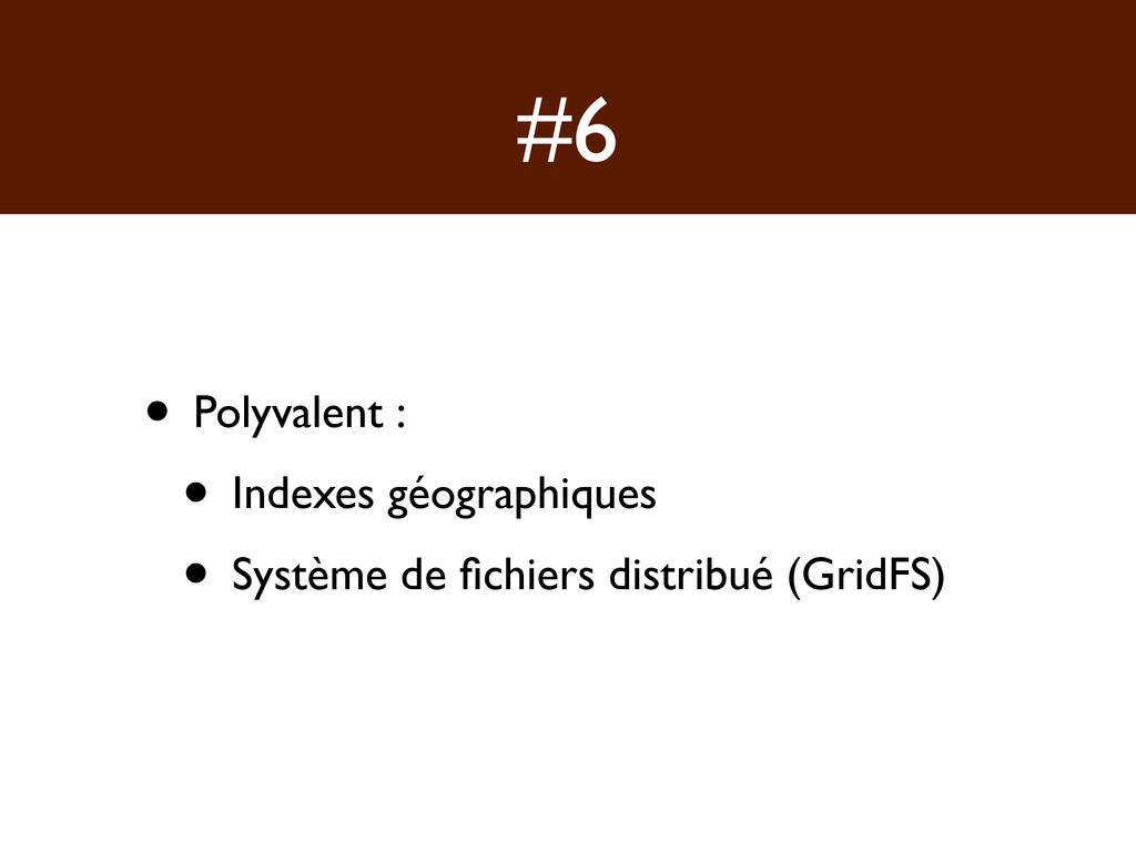 #6 • Polyvalent : • Indexes géographiques • Sys...