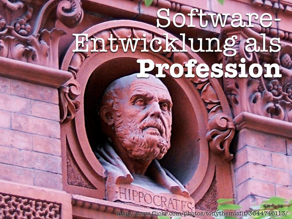 Software- Entwicklung als Profession http://www...