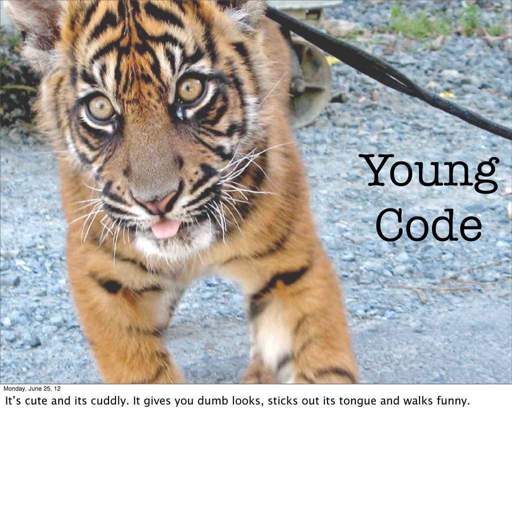 Young Code Monday, June 25, 12 It's cute and it...