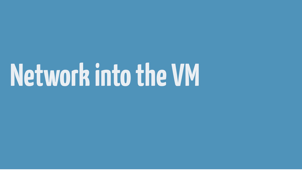 Network into the VM