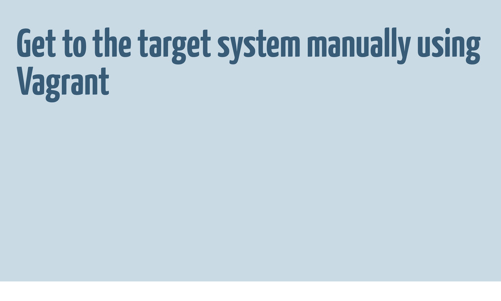 Get to the target system manually using Vagrant