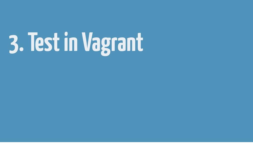 3. Test in Vagrant