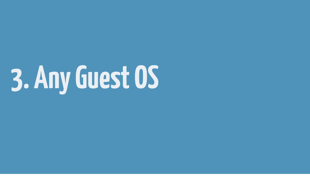 3. Any Guest OS