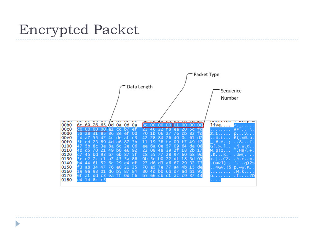 Encrypted Packet