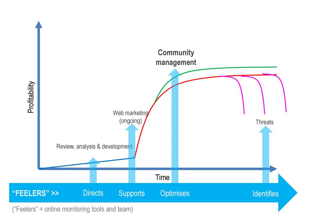Community management Profitability Review, anal...