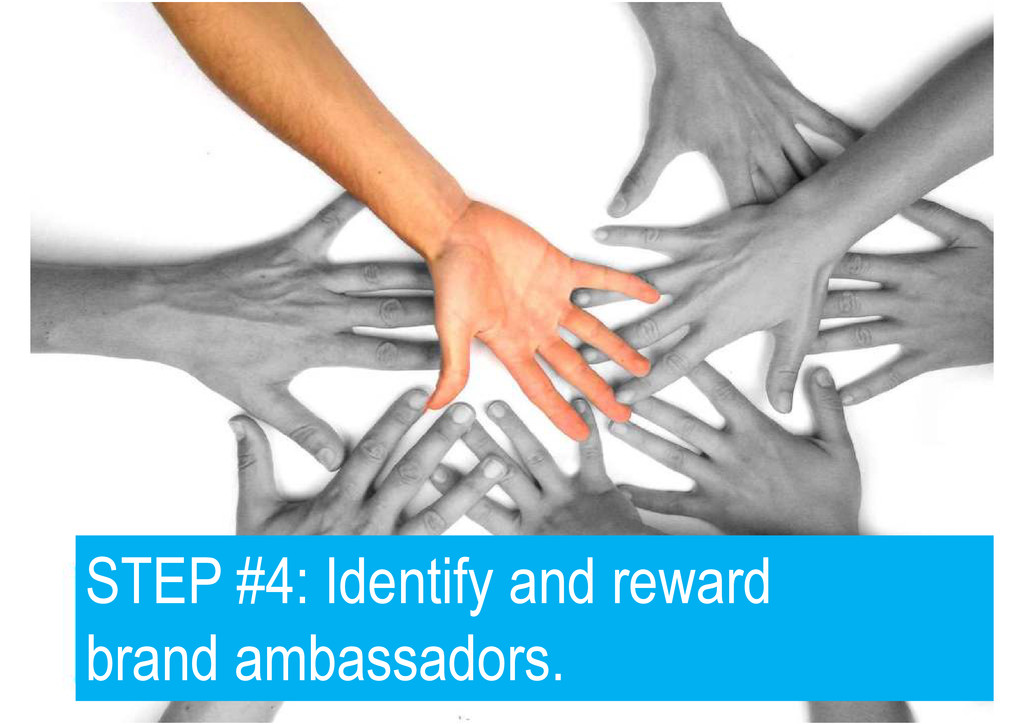 STEP #4: Identify and reward brand ambassadors.