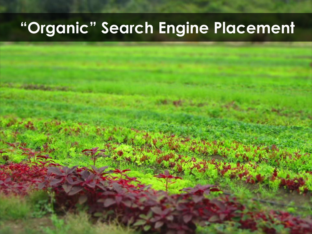 """""""Organic"""" Search Engine Placement"""