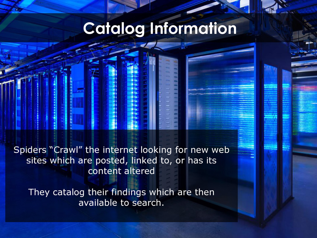 """Catalog Information Spiders """"Crawl"""" the interne..."""