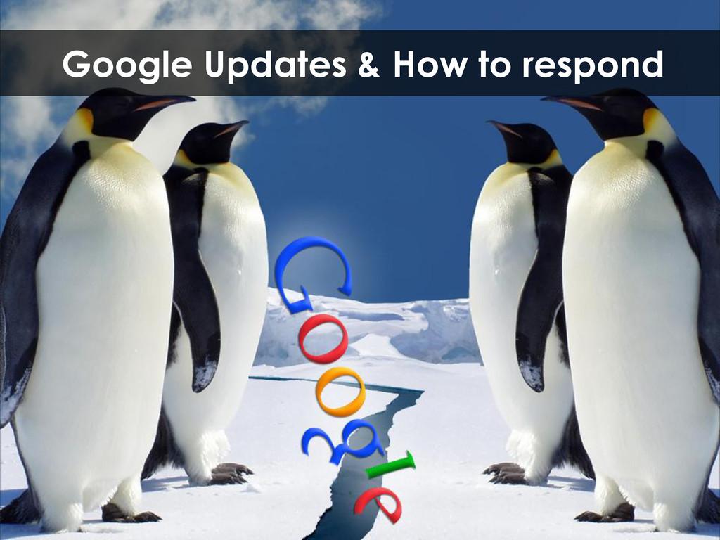 Google Updates & How to respond