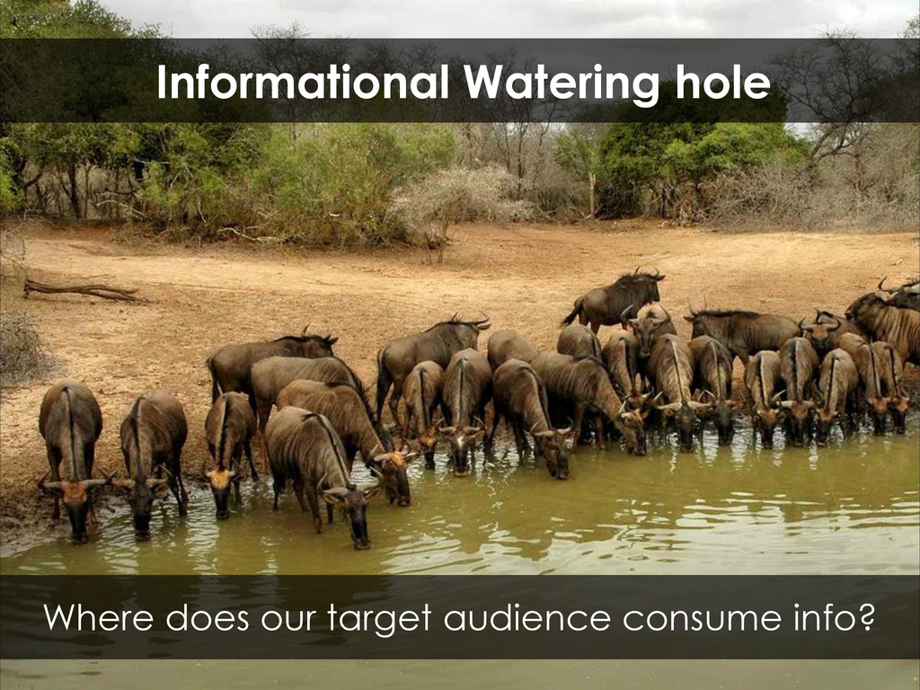 Where does our target audience consume info? In...