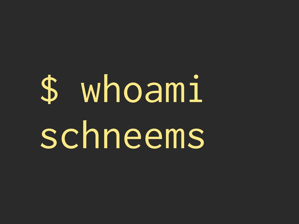 $ whoami schneems