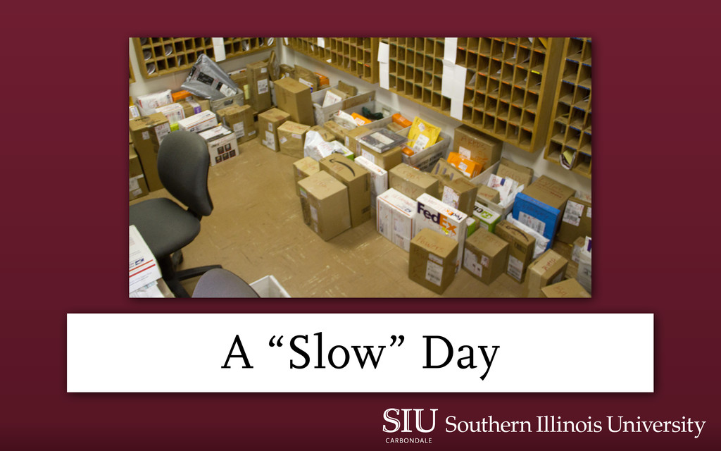"""A """"Slow"""" Day"""