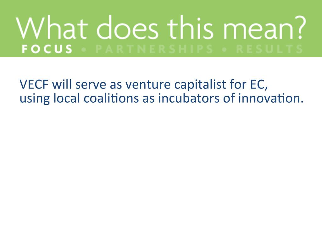 VECF will serve as venture capit...