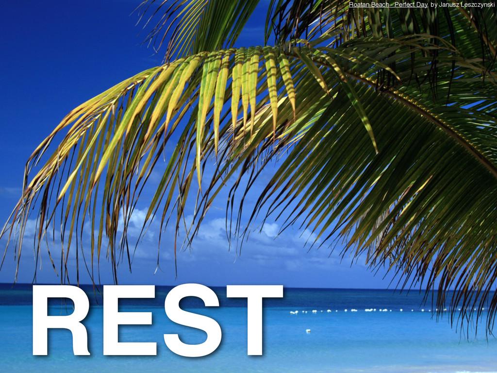 REST Roatan Beach - Perfect Day, by Janusz Lesz...