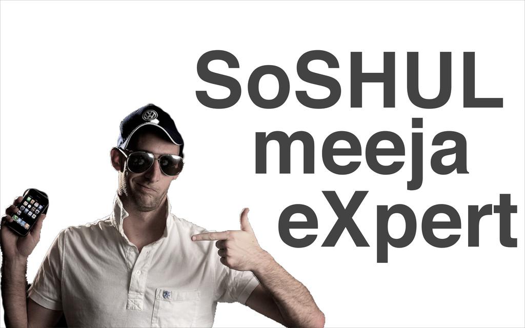 SoSHUL meeja eXpert