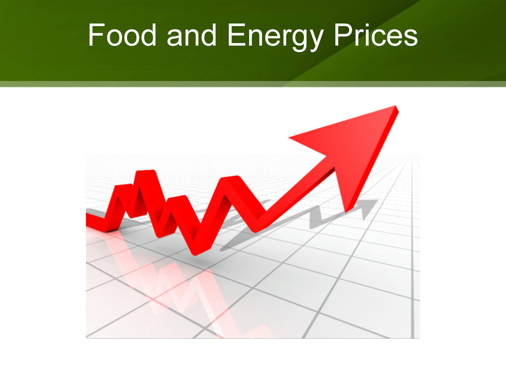 Food and Energy Prices