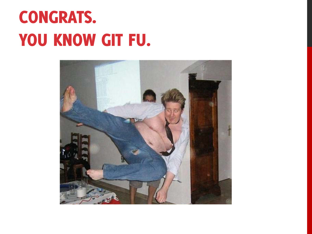 CONGRATS. YOU KNOW GIT FU.