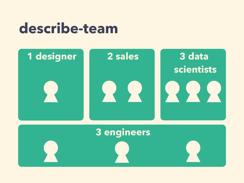 describe-team 1 designer 2 sales 3 data scienti...