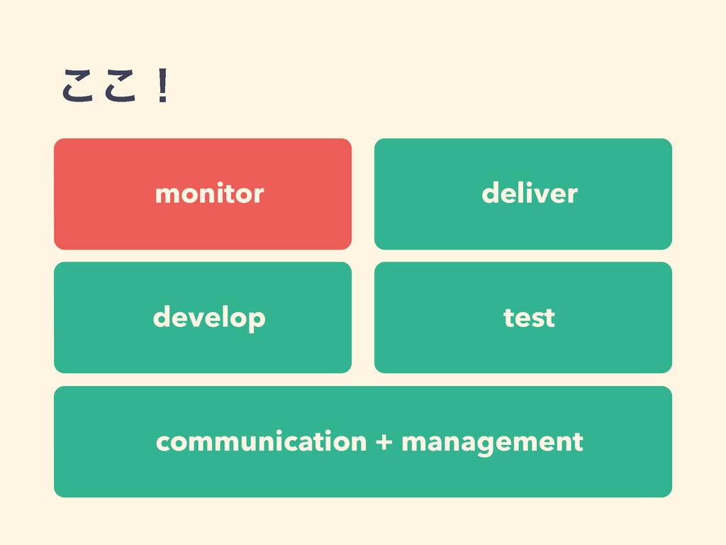 deliver communication + management develop test...