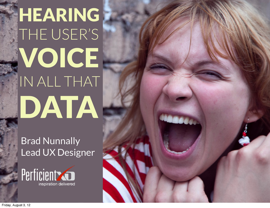 HEARING THE USER'S VOICE IN ALL THAT DATA Brad ...