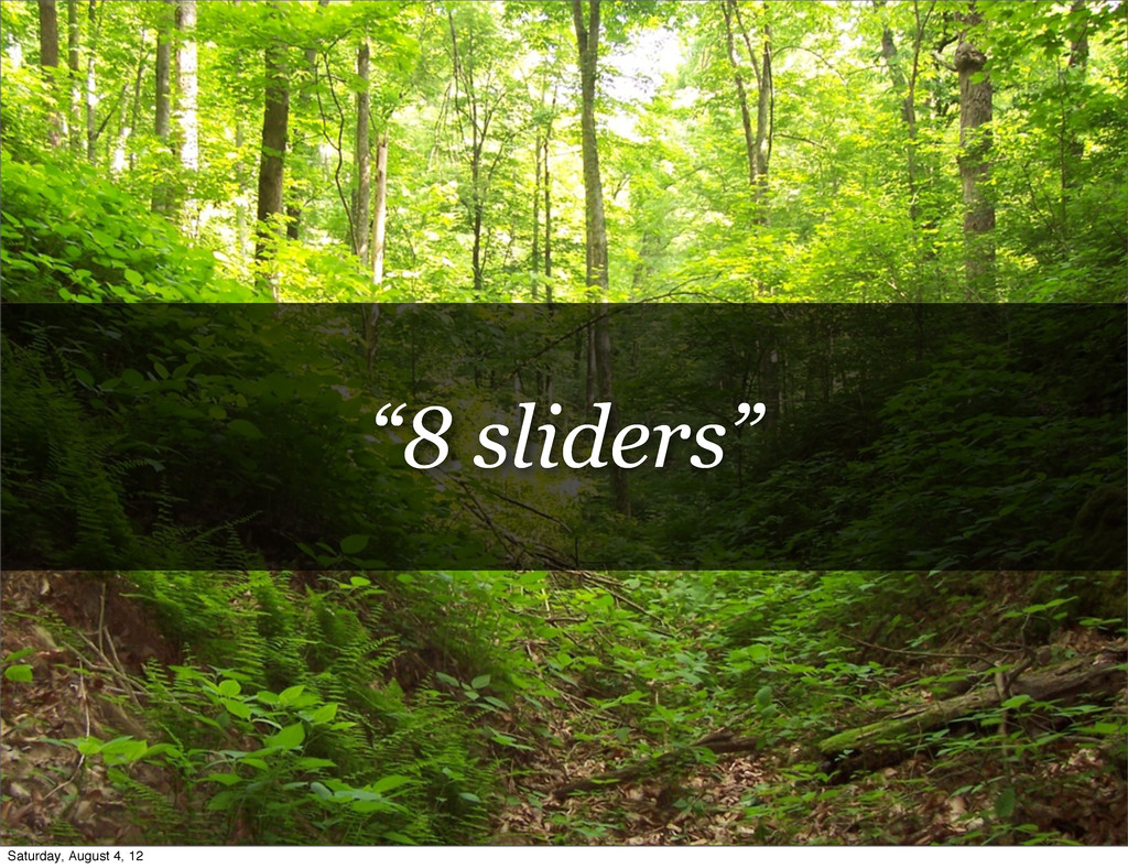 """8 sliders"" Saturday, August 4, 12"