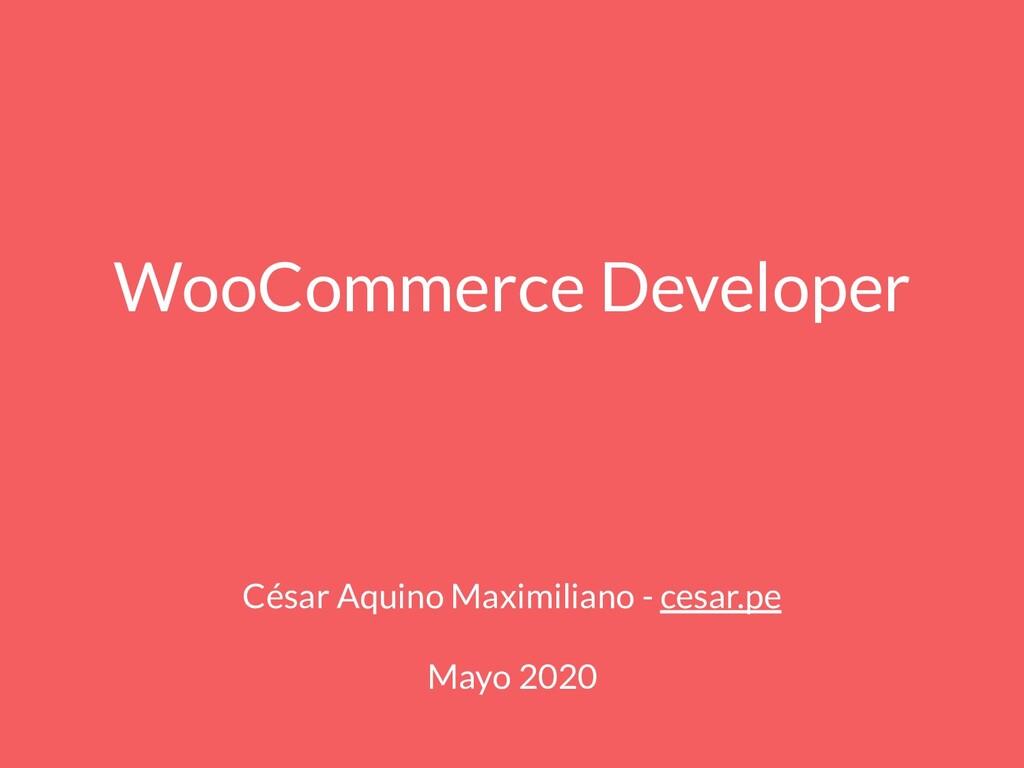 WooCommerce Developer César Aquino Maximiliano ...