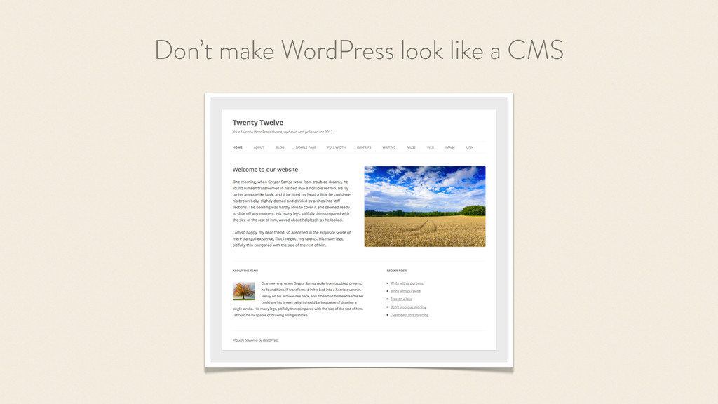 Don't make WordPress look like a CMS