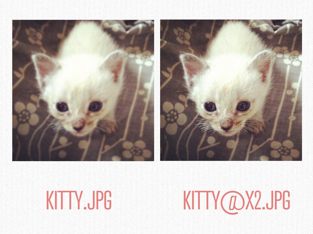 KITTY.JPG KITTY@X2.JPG