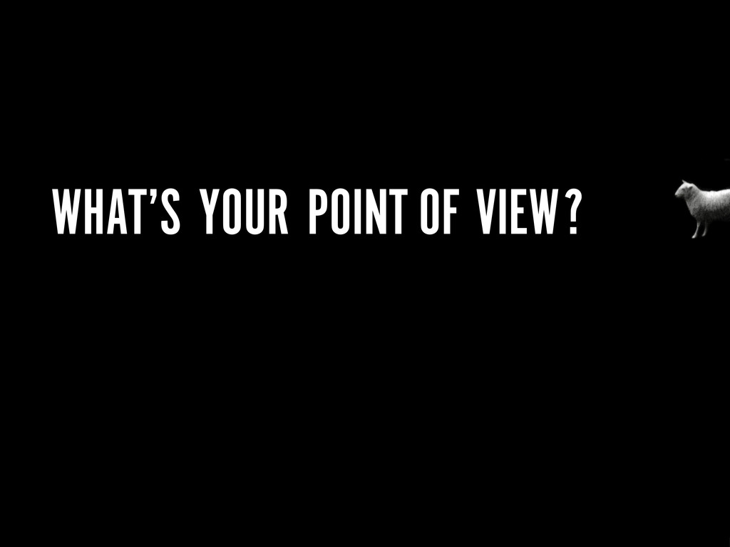 WHAT'S YOUR POINT OF VIEW?