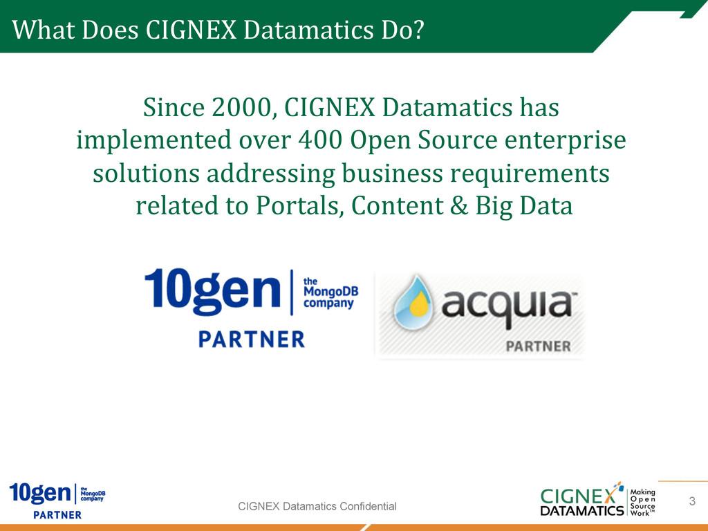 CIGNEX Datamatics Confidential What Does ...