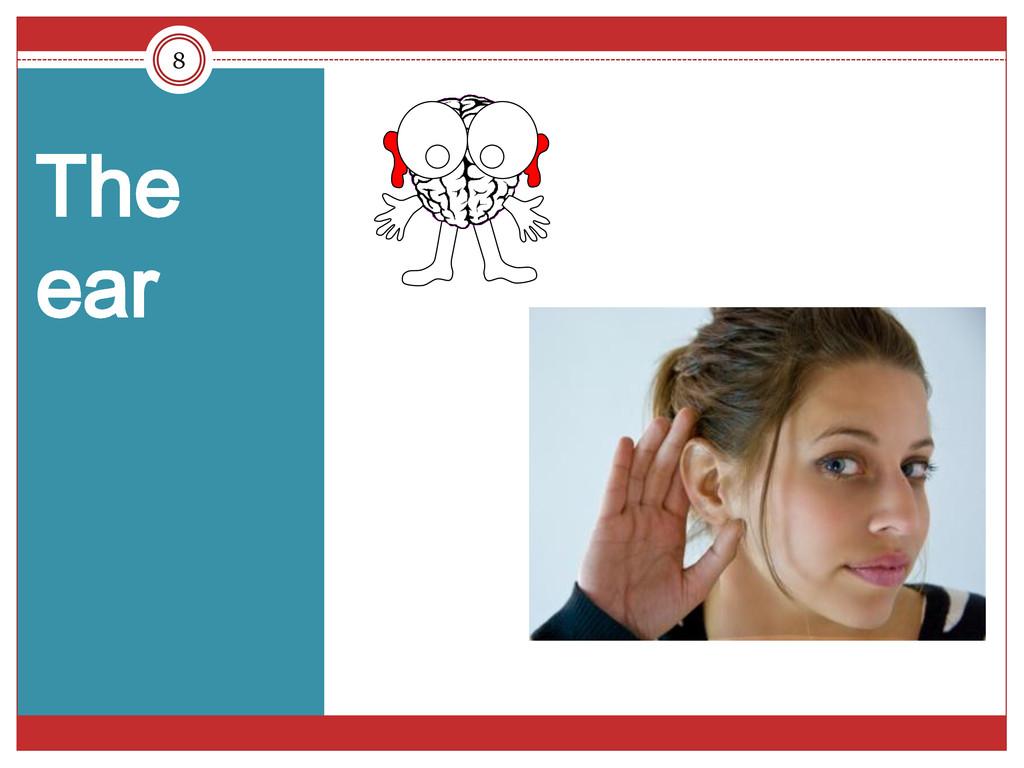 8 The ear