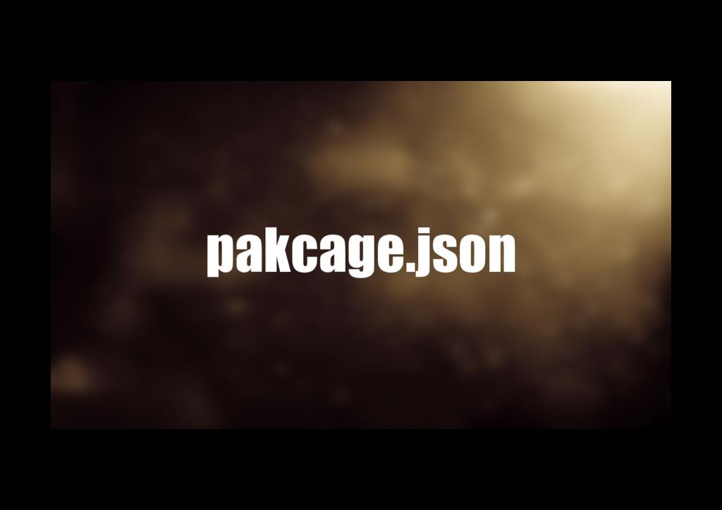pakcage.json