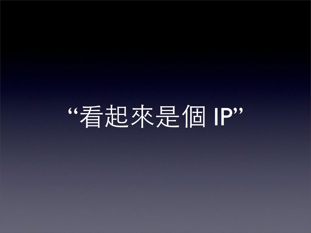 """""""看起來是個 IP"""""""